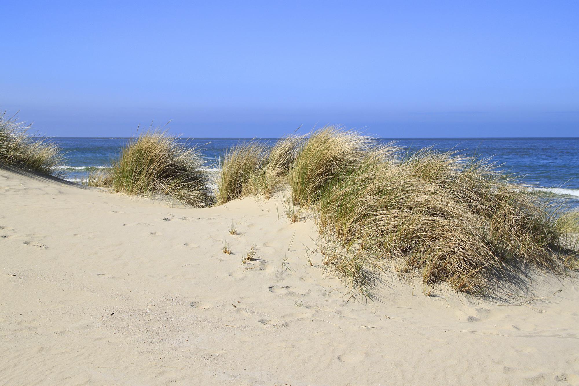 duinen-en-de-noordzee